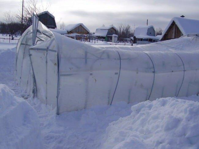 Разрушенная снегом теплица