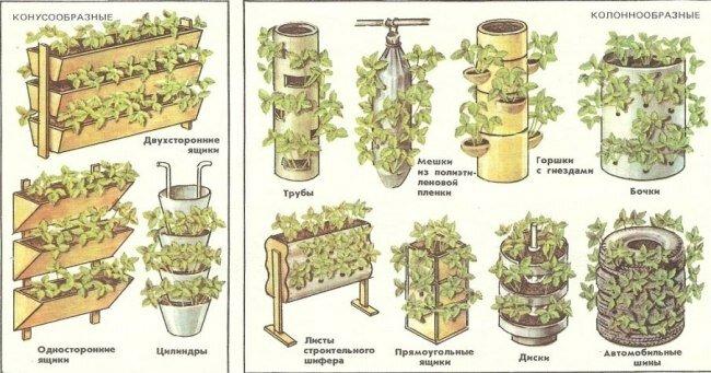 Разновидности емкостей