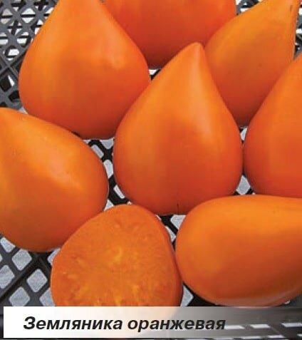«Оранжевая клубника»