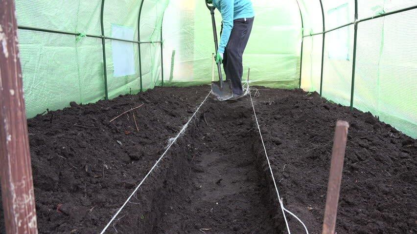 Почва для парника своими руками 11