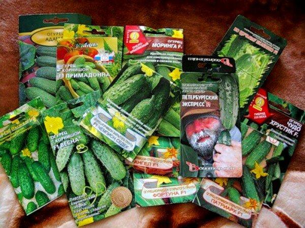 Семена в пакетах