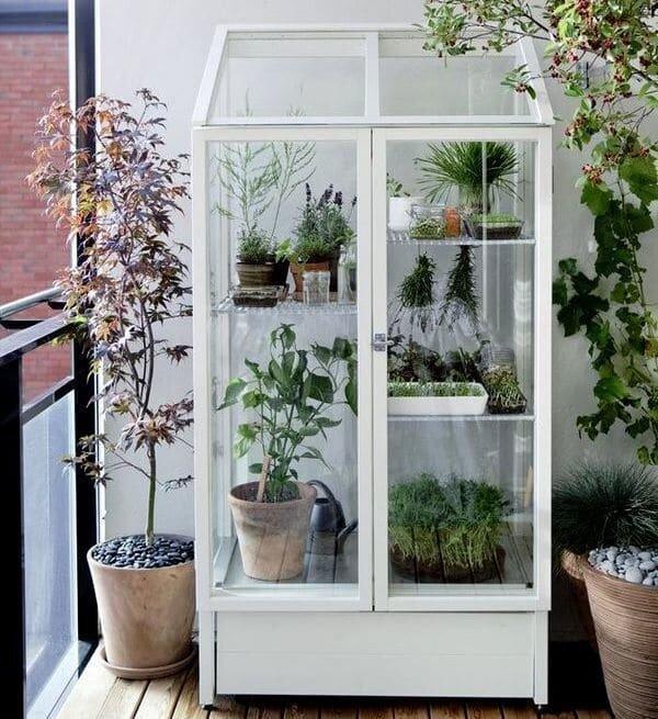 Шкаф-теплица с растениями на балконе