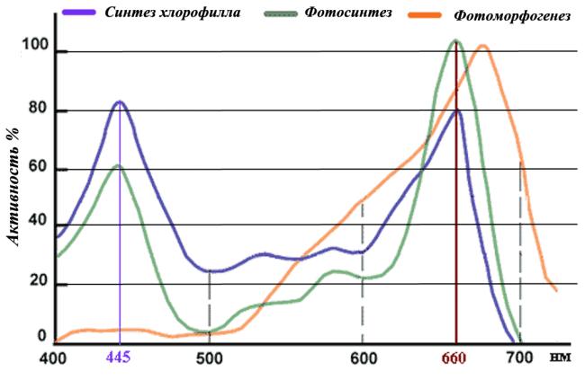 Спектры и рост растений